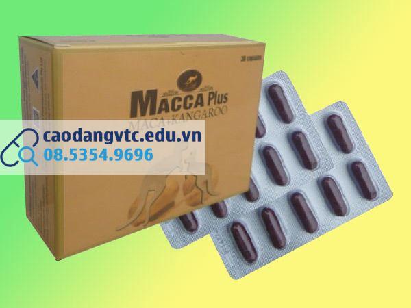 Hình ảnh mặt trước hộp thuốc và vỉ thuốc Macca Plus
